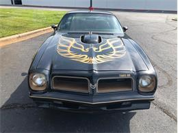 Picture of 1976 Pontiac Firebird Trans Am - $95,000.00 Offered by a Private Seller - QPBT