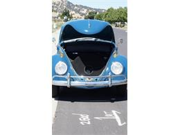 Picture of '65 Volkswagen Beetle located in Sparks Nevada Auction Vehicle - QPEN