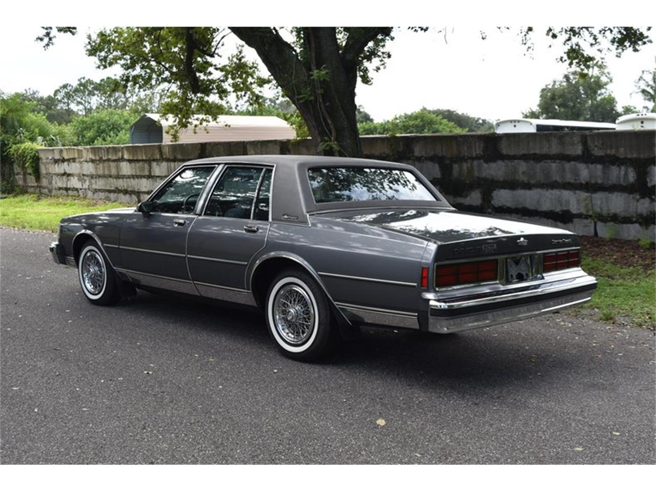 Large Picture of '89 Caprice - QPHN