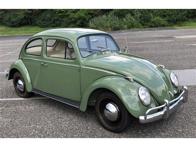 Picture of '63 Beetle - QPQC