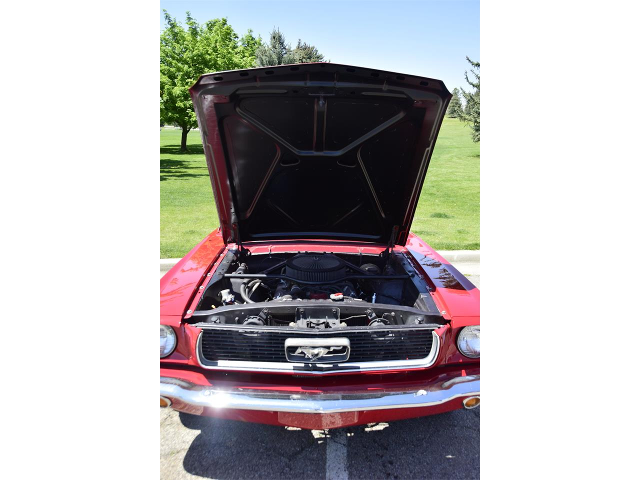 Large Picture of '66 Mustang located in Utah Offered by a Private Seller - QPZ1