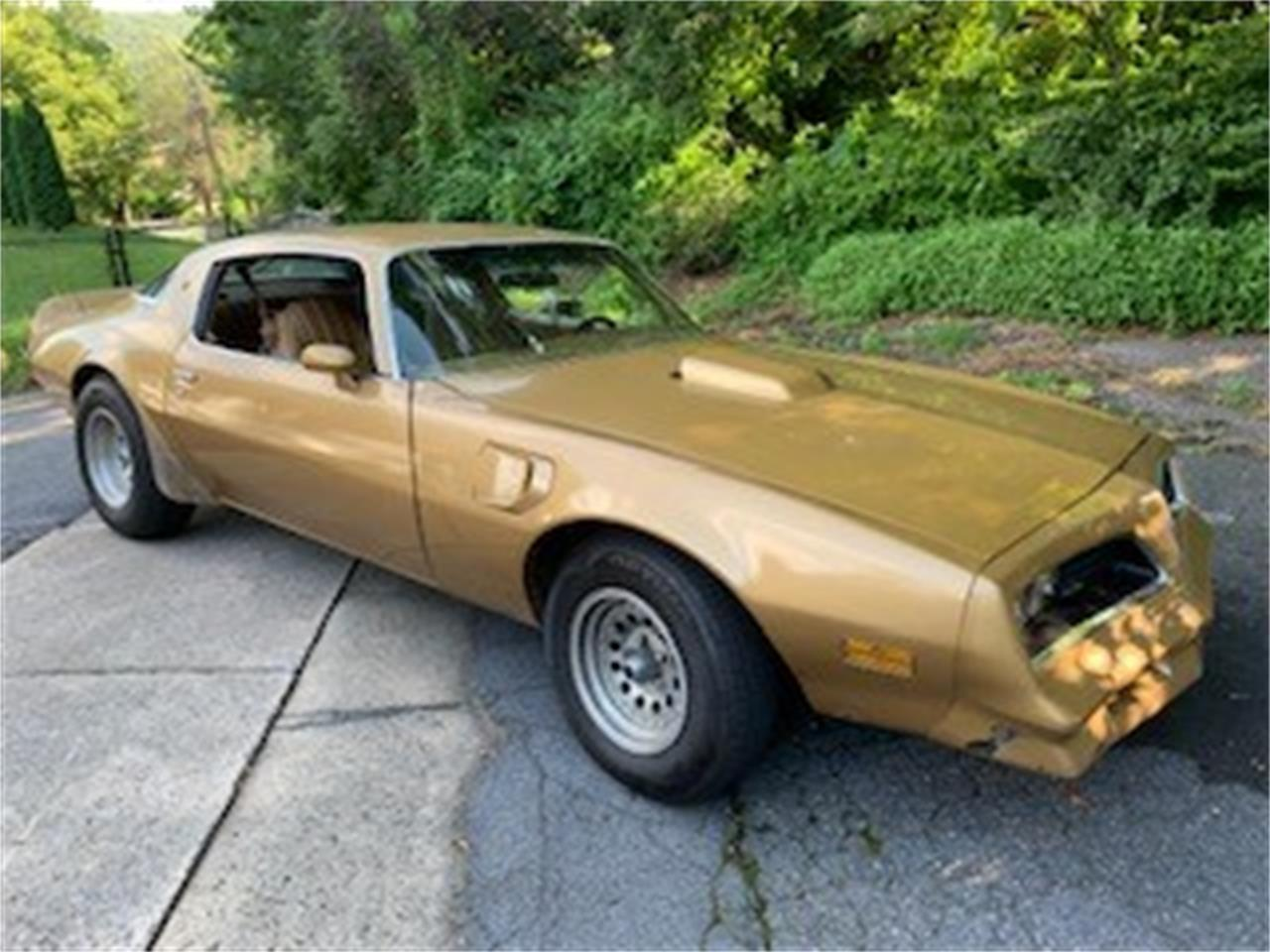 Large Picture of '78 Firebird Trans Am - QQ24