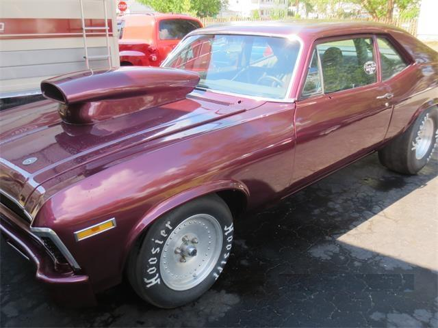 Picture of '72 Nova - QQ9H