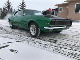 Picture of Classic 1967 Camaro located in CALGARY Alberta - $69,900.00 Offered by Muscle Car Trader - QQCP