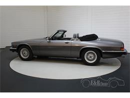 Picture of 1991 XJS located in noord brabant - $39,050.00 - QQJ7