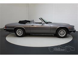 Picture of 1991 Jaguar XJS located in noord brabant - QQJ7