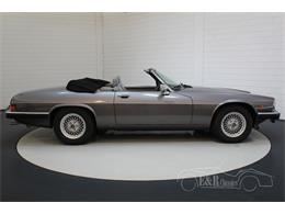 Picture of '91 XJS - $39,050.00 - QQJ7