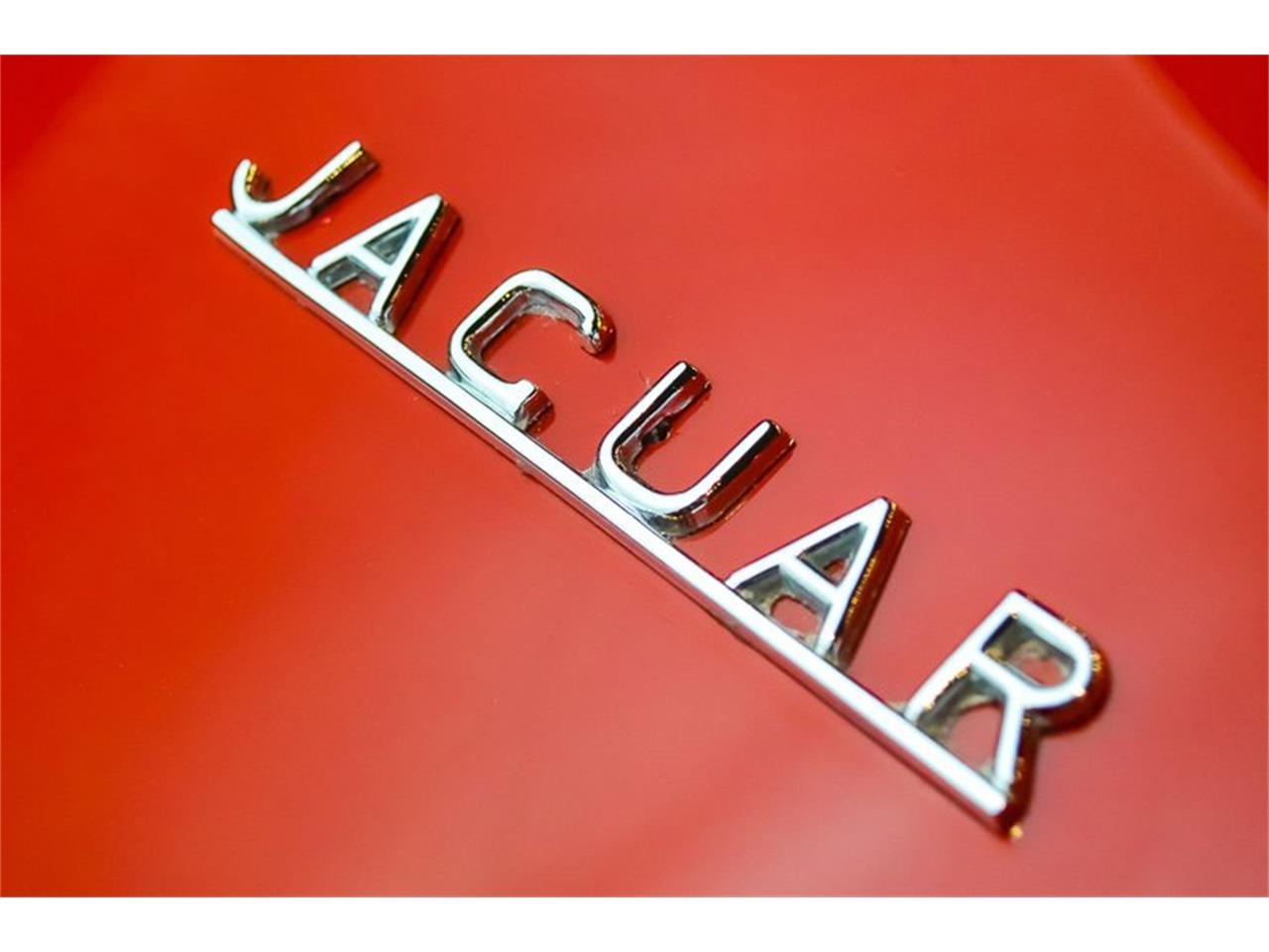 Large Picture of 1962 Jaguar E-Type - QQL2