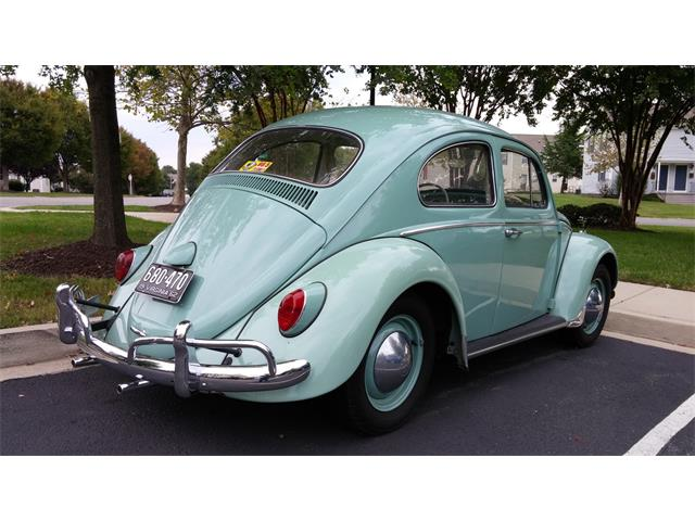Picture of '62 Beetle - QR09
