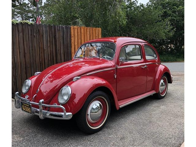 Picture of '63 Beetle - QLEY