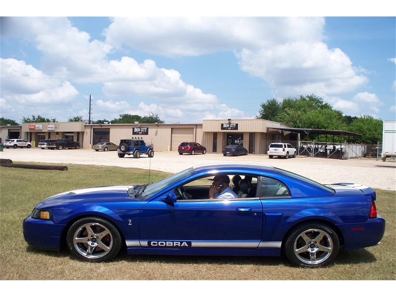 Large Picture of '03 Mustang Cobra - QR4G