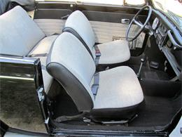Picture of '68 Beetle - QRFX