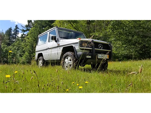 Picture of '91 G-Class - QRJ9
