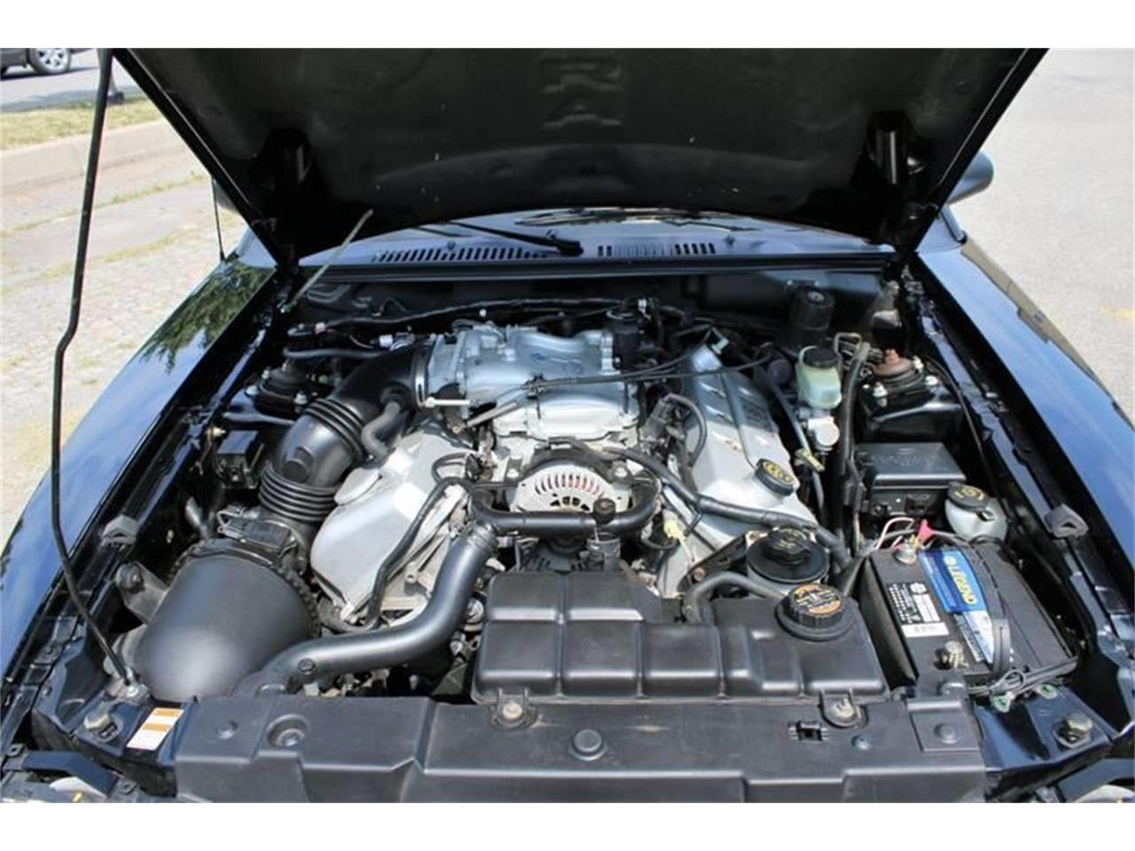 Large Picture of '99 Mustang SVT Cobra - QRM2