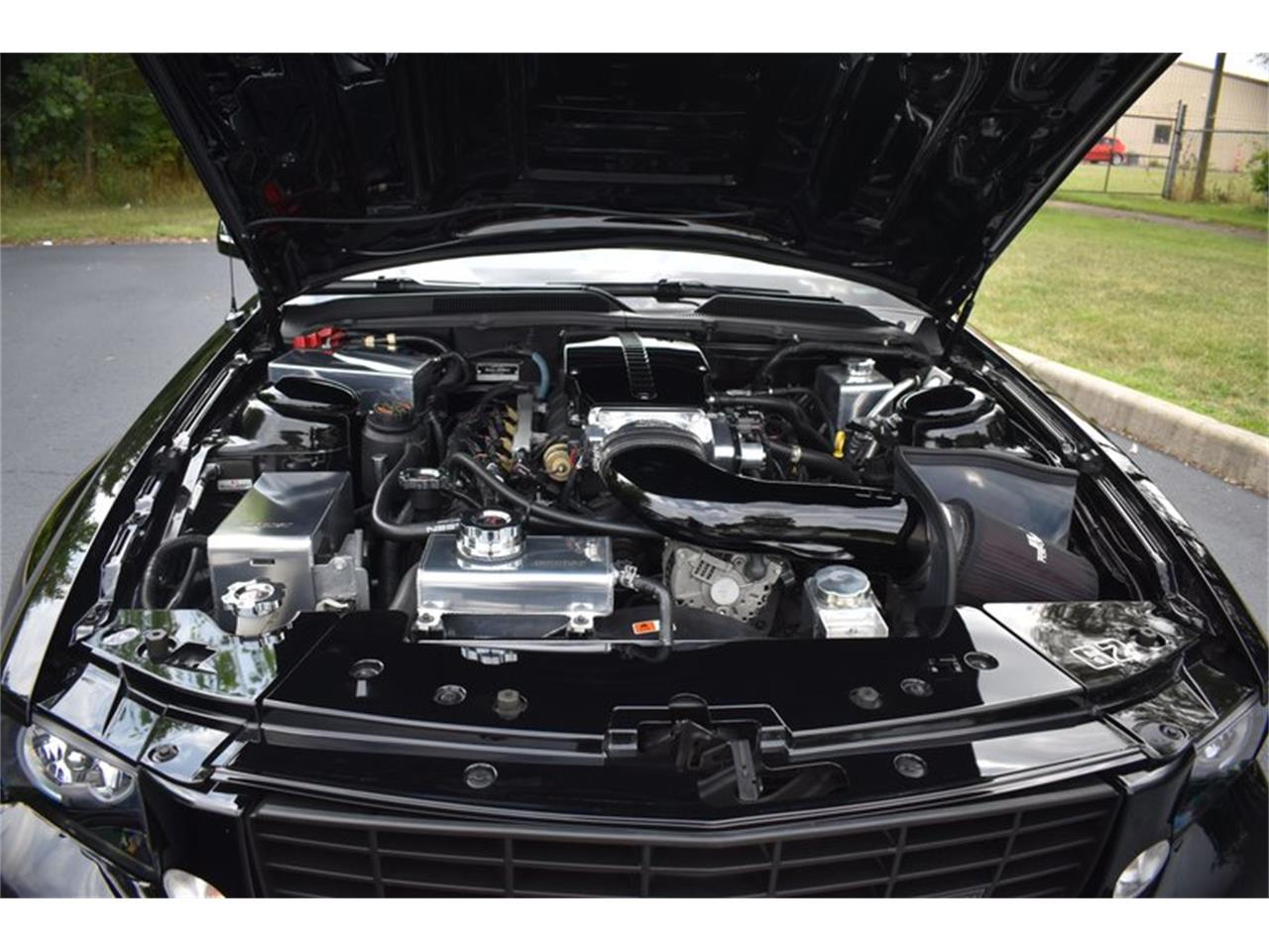 Large Picture of '06 Mustang - QRMS