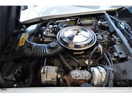 Picture of '81 Corvette - QRMY