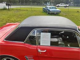 Picture of '66 Mustang - QRZ3