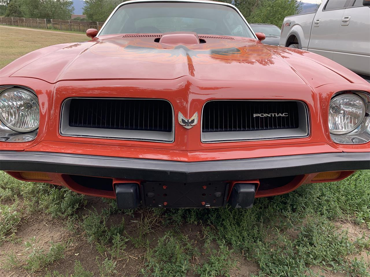 Large Picture of '74 Firebird Trans Am located in Colorado - QS0Q