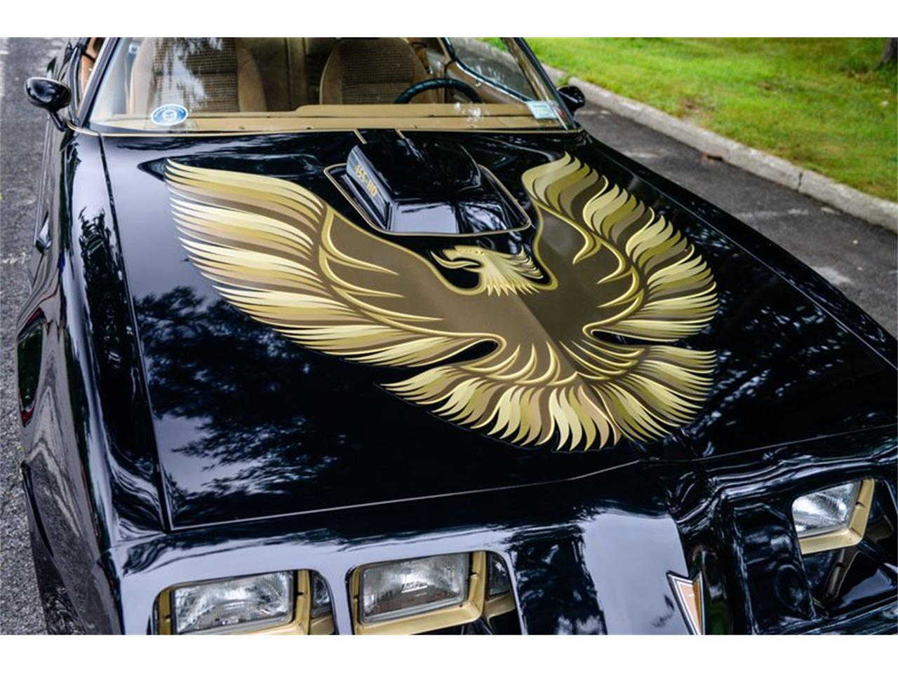 Large Picture of '81 Firebird Trans Am - QS3P