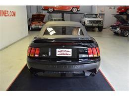 Picture of '99 Mustang SVT Cobra - QS7V
