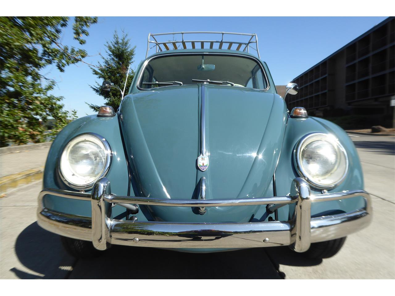 Large Picture of '64 Beetle - QSCF