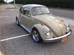 Picture of '68 Beetle - QSCV