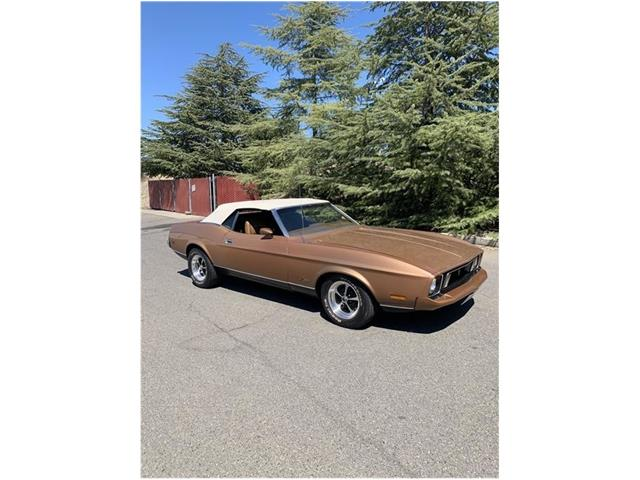 Picture of Classic 1973 Ford Mustang - $19,995.00 Offered by  - QTSL
