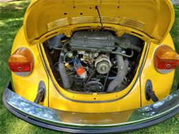 Picture of '74 Beetle - QU1D