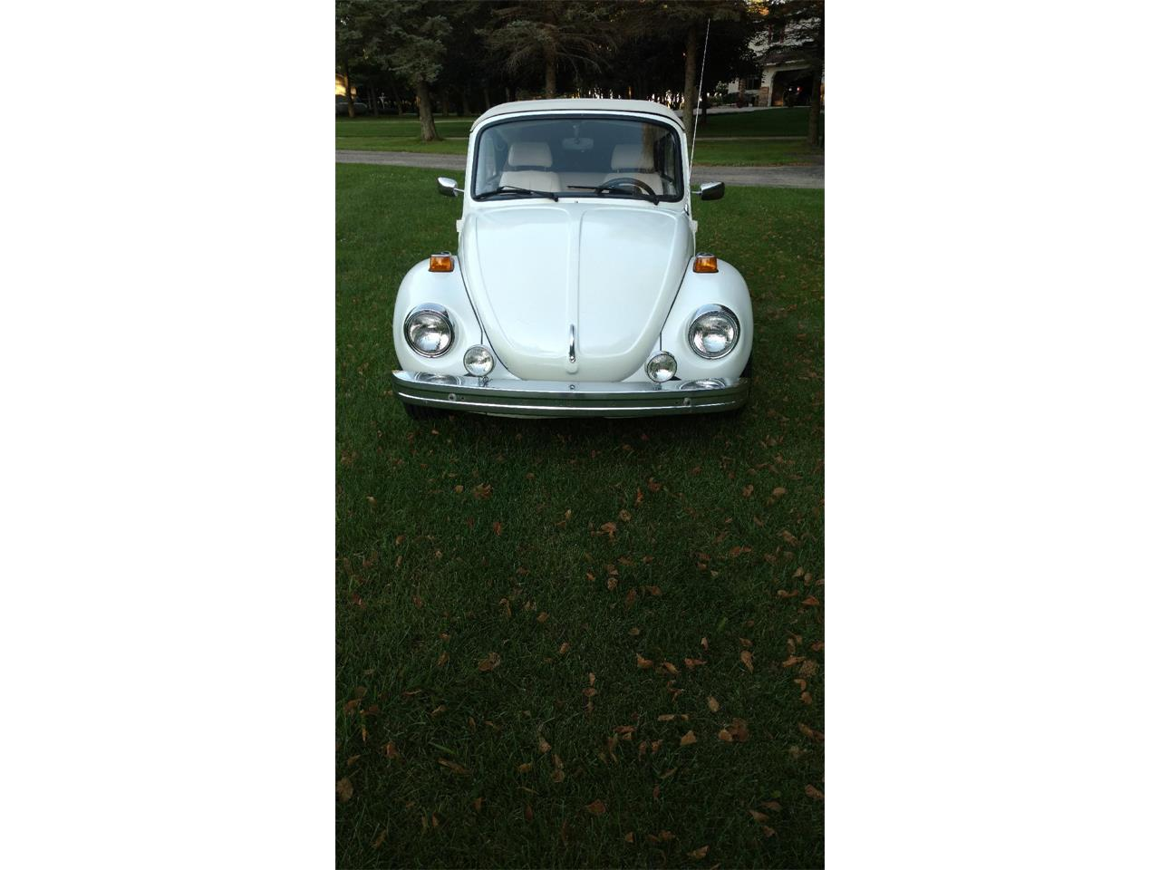 Large Picture of 1976 Beetle located in Minnesota - $4,000.00 - QUA9