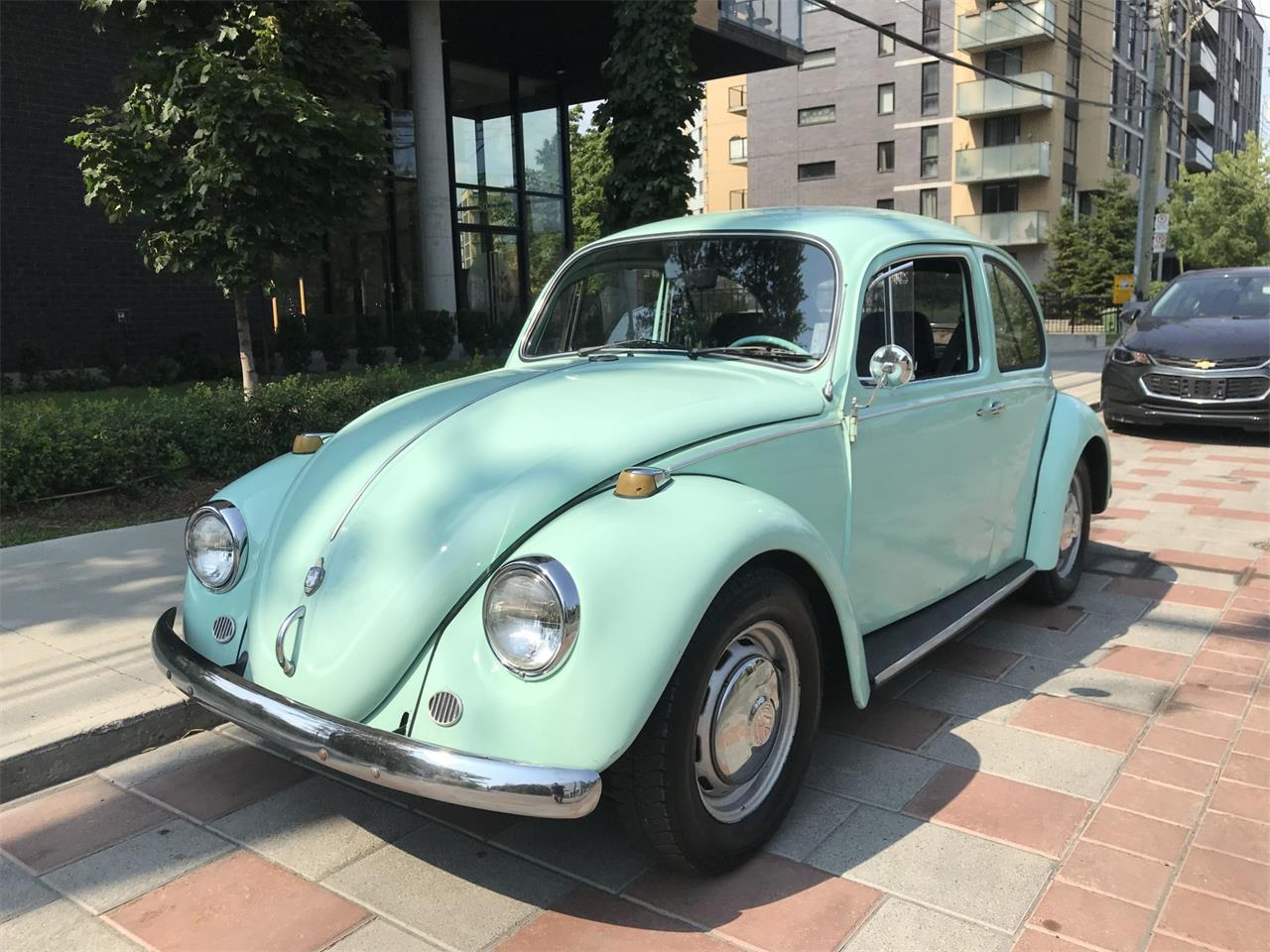 Large Picture of '67 Beetle - QSOO