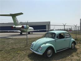 Picture of '67 Beetle - QSOO