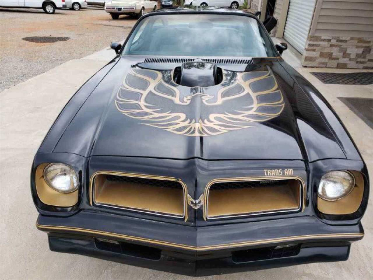 Large Picture of '76 Firebird Trans Am - QUC7