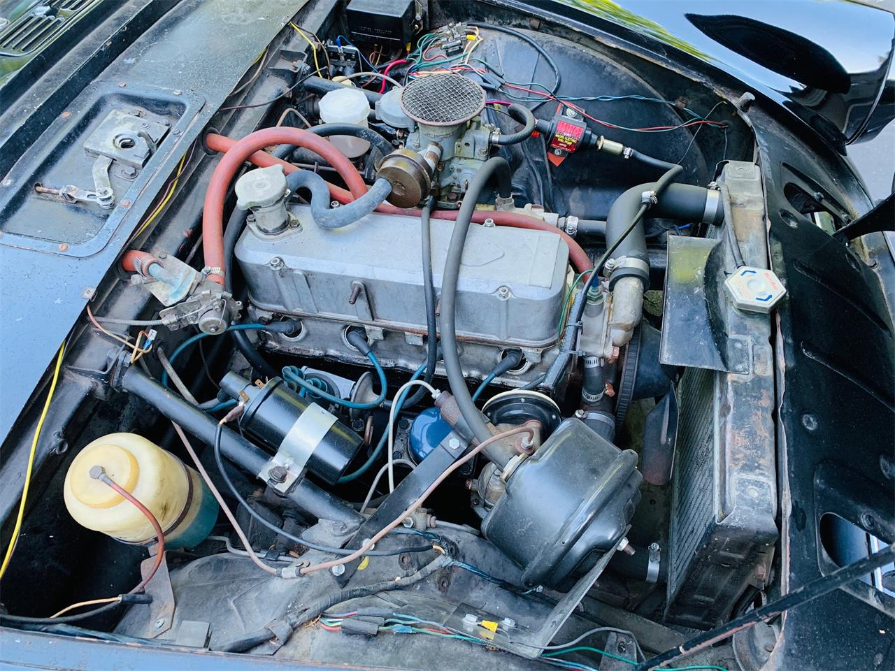 Large Picture of '65 Alpine IV - QVQT