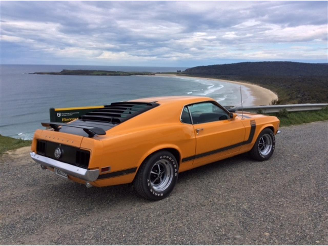 Large Picture of '70 Mustang - QVYN