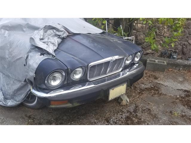 1978 Jaguar XJ