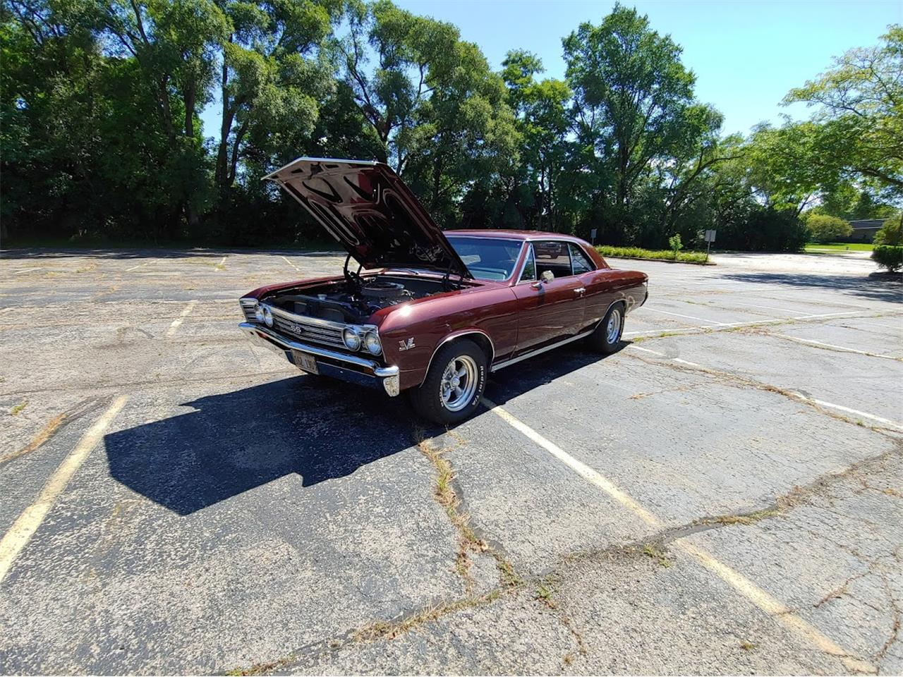 Large Picture of 1967 Chevrolet Chevelle SS - QW1M