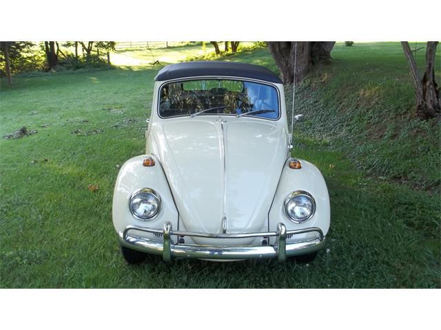 1967 Volkswagen Beetle for Sale on ClassicCars com on
