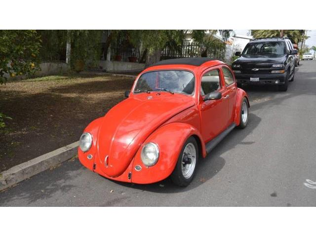 Picture of '63 Beetle - QWBZ