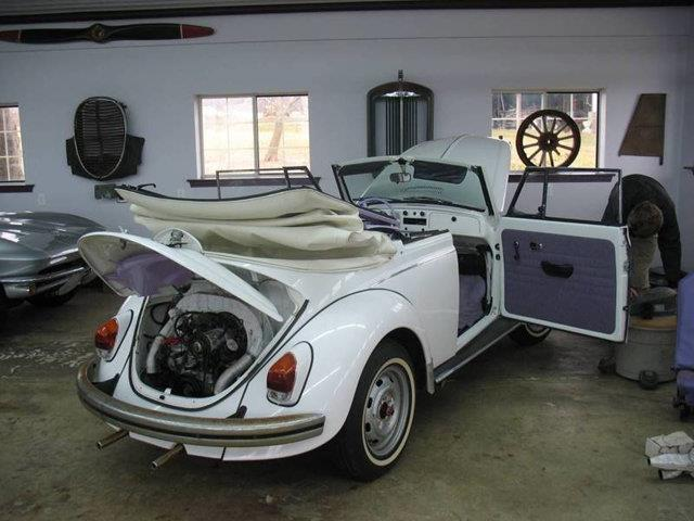 Picture of '69 Beetle - QWD9
