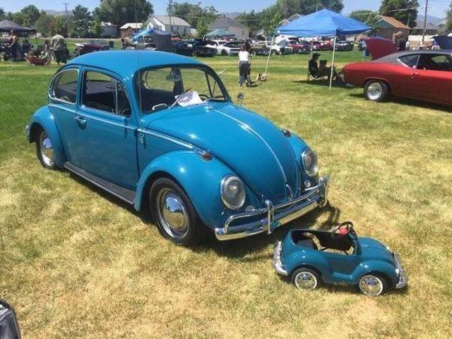 Picture of '65 Beetle - QWEQ