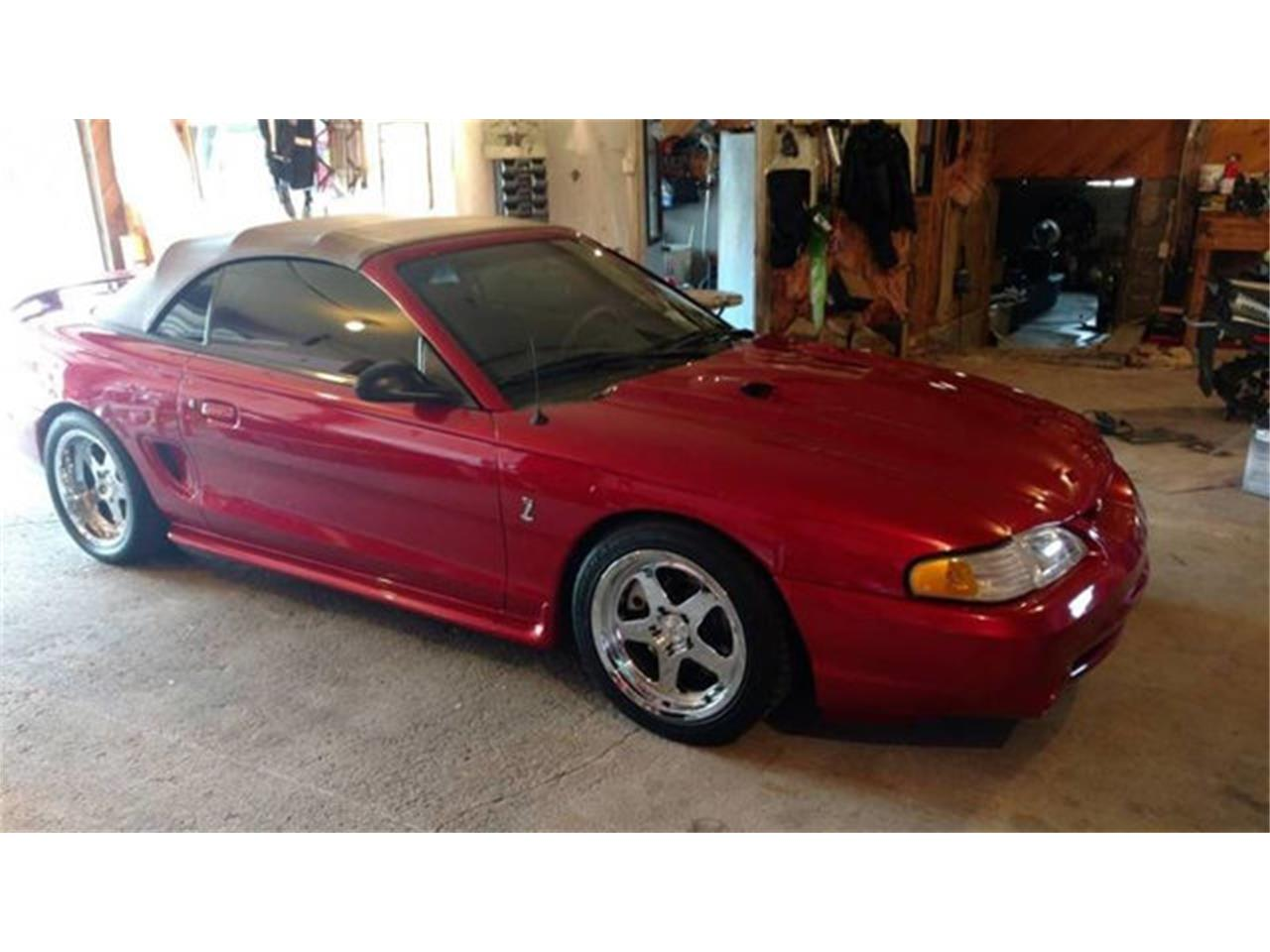 Large Picture of '98 Mustang SVT Cobra - QWN1