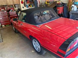 Picture of '87 Spider - QWNB