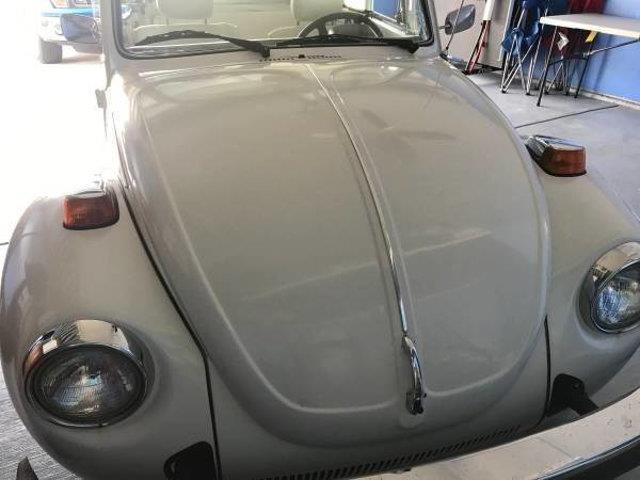 Picture of '79 Super Beetle - QWPJ