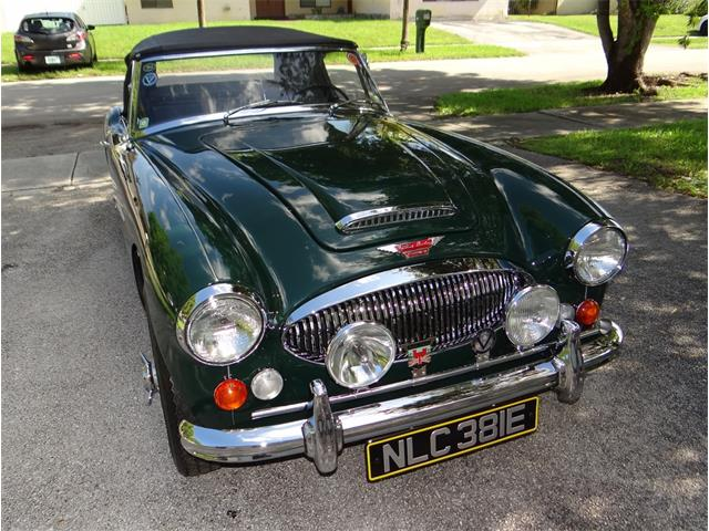 Classic Austin-Healey for Sale on ClassicCars com on