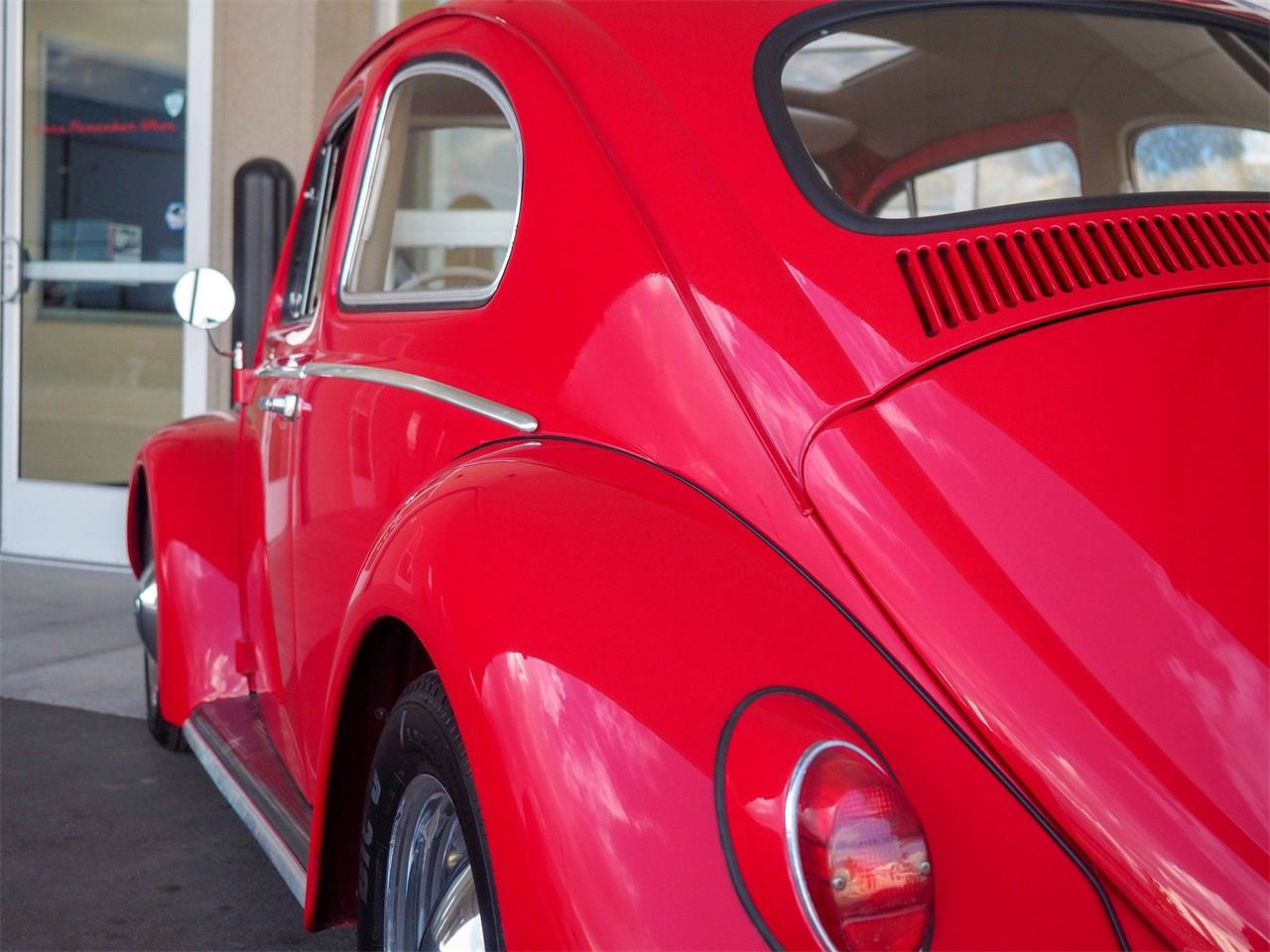 Large Picture of Classic '64 Beetle - QX5G