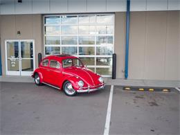 Picture of 1964 Beetle located in Englewood Colorado - $18,499.00 Offered by Cars Remember When - QX5G
