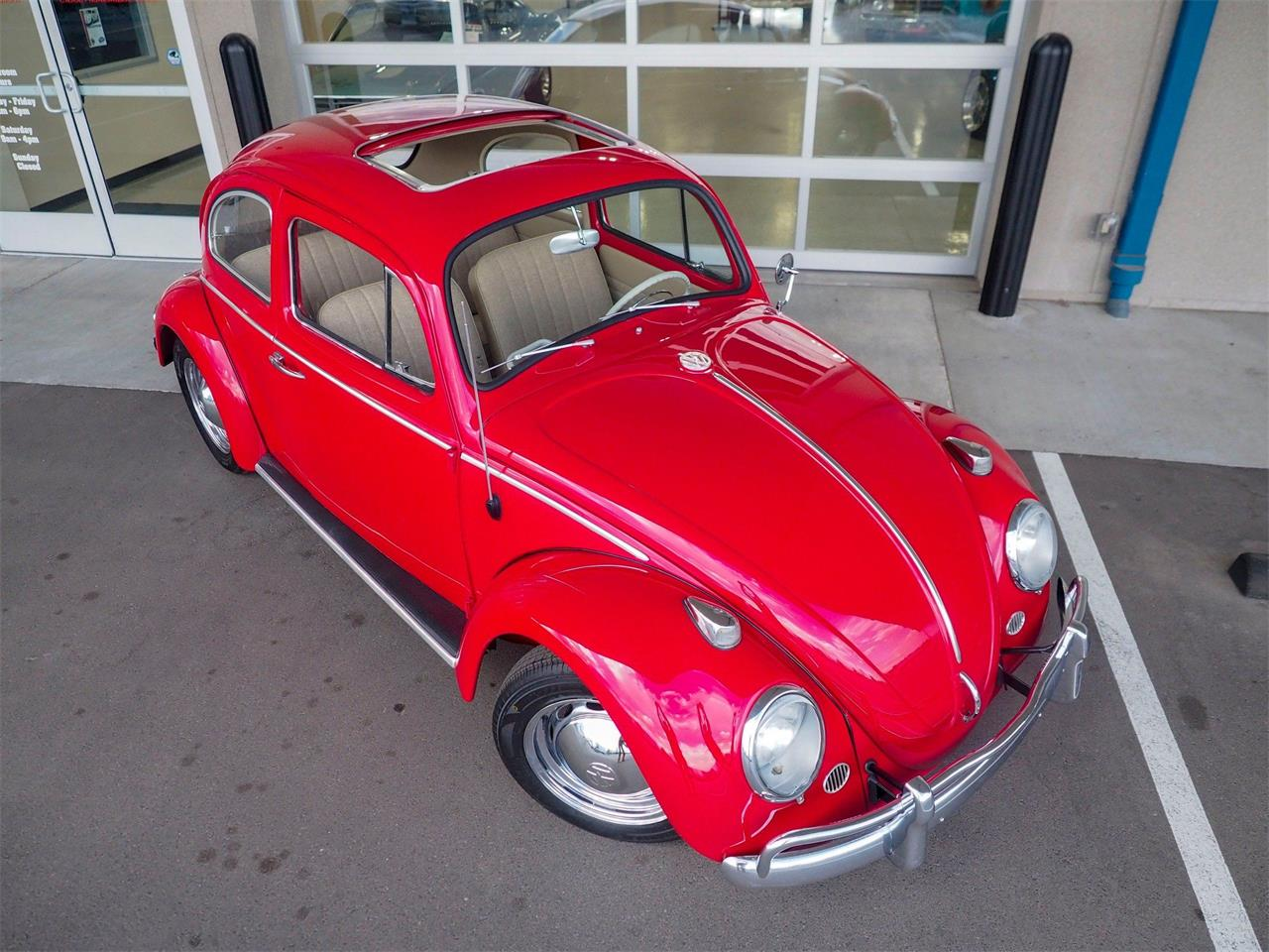 Large Picture of '64 Volkswagen Beetle located in Colorado - QX5G