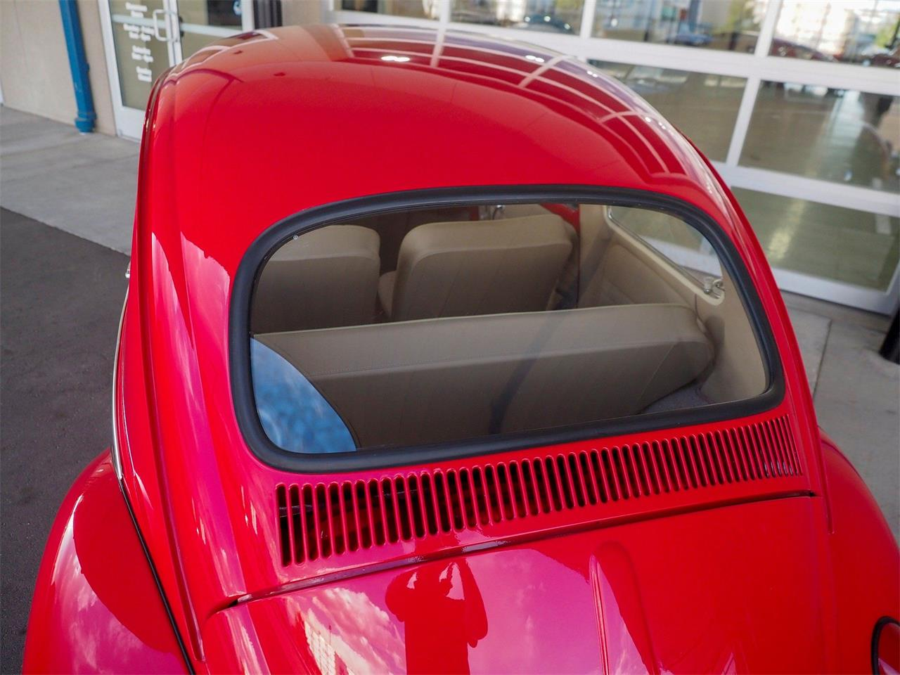 Large Picture of Classic 1964 Beetle located in Englewood Colorado - $18,499.00 - QX5G