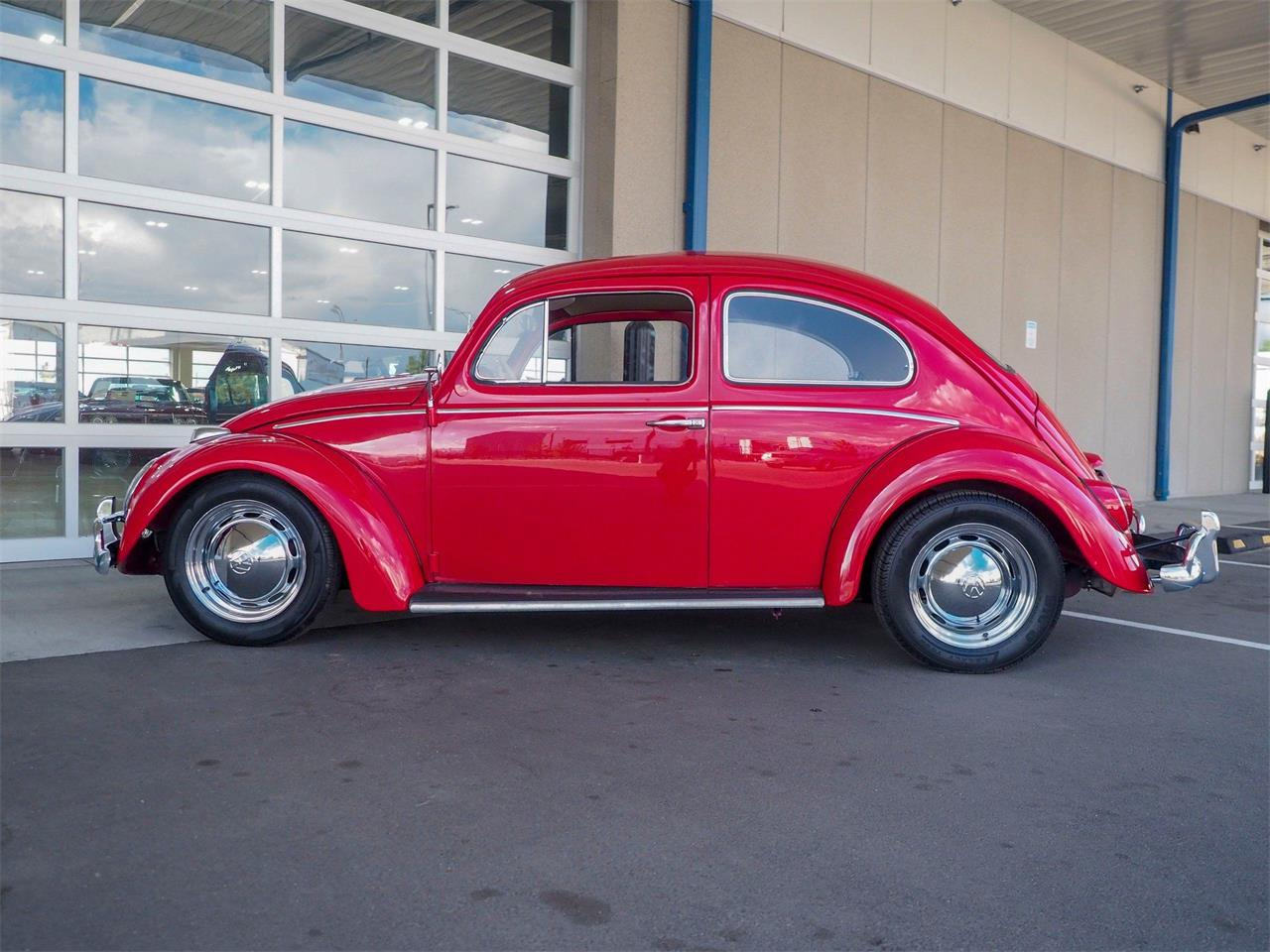 Large Picture of Classic '64 Volkswagen Beetle - QX5G