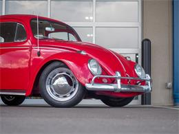 Picture of Classic 1964 Volkswagen Beetle located in Englewood Colorado - QX5G